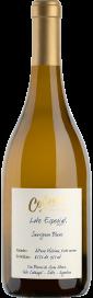2020 Sauvignon Blanc Lote Especial Altura Máxima Valle Calchaquí Bodega Colomé 750.00