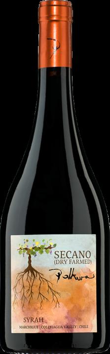 2016 Syrah Secano Marchigue Valle de Colchagua Viña Polkura 750.00