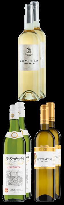 Tasting Box Schweizer Weissweine Tasting Box vins blancs suisses 4500.00