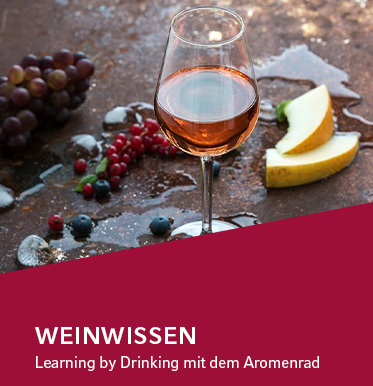Online Magazin: Aromenrad