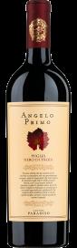 2019 Angelo Primo Nero di Troia Puglia IGP Cantine Paradiso 750.00