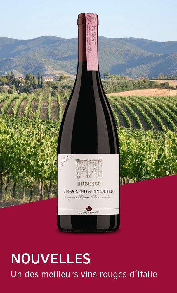 Magazine en ligne: Un des meilleurs vins rouges d'Italie